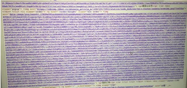大图片base64编码后示例